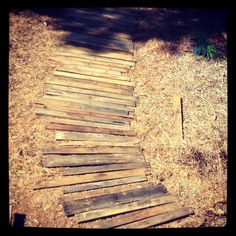 Up cycle. Pathway using wooden pallets.