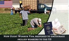 New Guest #Worker #Visa Proposed to Encourage #Skilled #Workers to the #US. Read more...  https://www.morevisas.com/immigration-news-article/new-guest-worker-visa-proposed-to-encourage-skilled-workers-to-the-us/4505/