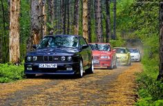 M3 Lineage