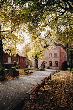 Alsace, Petite France, Château Fort, Autumn Scenes, Beautiful Things, Sidewalk, Traveling, Paris, Landscape