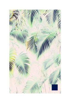 Color pallet #palms