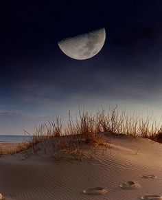 How to Photograph the Moon. Cant wait to photograph the full moon at the beach saturday. And it is the biggest moon to date!