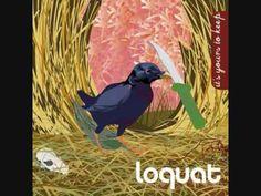Loquat - Rocks