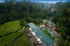 In the jungle, the mighty jungle... Komaneka at Bisma hotel, Ubud, Bali, Indonesia