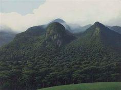 Contemplador de Montañas - Tomás Sánchez