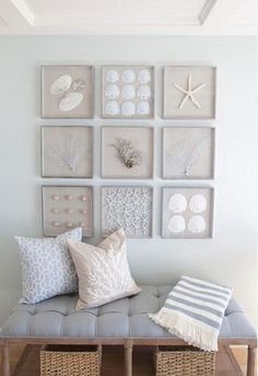 21 A Collection Of Framed Starfish, Sand Dollars, Seashells And Sea Fans For Nautical Wall Art