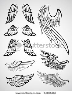 wings-how to draw