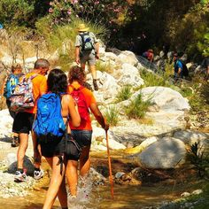 Disfrutando de una preciosa ruta de senderismo en la provincia de Málaga (España) . ... #senderismo #Trekking #hiking #running #outdoors #bike #montaña #montagne #scenery #sunshine #aventuras #adventure #adventuretime #naturaleza #nature #exploremore #salud #fun #fotografia #photo #photographer #travelphotography #viajes #turismo #travel #travelgram #traveling #wanderlust #btt http://tipsrazzi.com/ipost/1523539041072816484/?code=BUksq-QlaFk