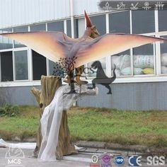 This simulation pteranodon model is according to the pterosaur& inherent characteristics. Which famous for its crown crest. The pteranodon animatronic model may have feathers. Dinosaurs Series, Outdoor Furniture, Outdoor Decor, Creatures, Live, Model, Scale Model, Models