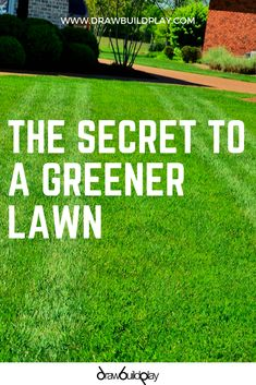 The secret to get a greener lawn this summer with our free tips and tricks. Free Lawn Care Schedule for a weed free greener lawn. # grass maintenance lawn care Secret DIY Tips to get a Greener Lawn