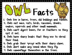 Fun facts about owls!  Turn this in to a writing opportunity and teach your kids about writing non fiction!