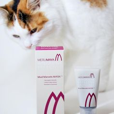 Clay mask might not be great on fur even though #Isabellethecat was quite curious. Try it on combination oily or congested skin and you'll love it. @merumaya is gorgeous #British brand worth checking out. #30plusblogs #skincare #marumaya #mask #claymask #beauty #bblogger #cat #cute #photobomb by socialbeautify