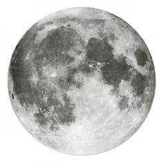 Moon. Bordskåner.