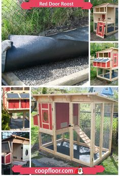 Building Dog Kennel My New Amstaff Pup 2 On One Sheet Plywood Dog