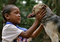 Kabang the hero dog who saved the lives of two young girls from a speeding motorcycle. Her upper jaw had to be removed after getting tangled up in a wheel.