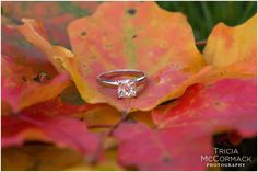 Kathleen and Jim's Fall Engagement Session in Lenox, MA - Tricia McCormack Photography