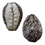 free knitting pattern for a cowry shell