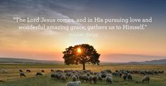 Amazing Grace Hymn With Lyrics Amazing Grace Hymn Amazing grace! How sweet the sound That sa. Bible Quotes, Bible Verses, Fun Quotes, Inspirational Quotes, The Lord Is Good, Word Of Faith, Lord And Savior, All Gods Creatures, Yesterday And Today
