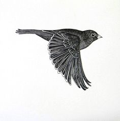Flying bird, original ink drawing by piperewan on Etsy