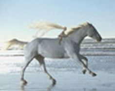 """Read more: https://www.luerzersarchive.com/en/magazine/commercial-detail/citron-51953.html Citroën Citroën DS3: """"Ugo Baby"""" [00:51]# A baby with long blonde hair is riding along the beach on a white horse playing the schmaltzy Spandau Ballet hit """"True"""" (1983). Such are the kitschy fantasies evoked by a trip in the Citroën Ds3. Tags: Tom Kuntz,Citroën,Gilbert Scher,Luca Cinquepalmi,Marco Venturelli,MJZ, Los Angeles,H, Paris"""