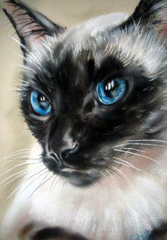 """Royal Blue"" par Paul Knight"
