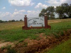 Cotton Plant, Arkansas