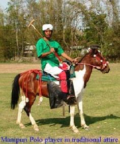 Manipuri Pony Breed Standard