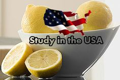 Study in the USA you need to know college and university lists, right here find pinterest trending US university and college photos, famous post from professors, university building, student cheering.