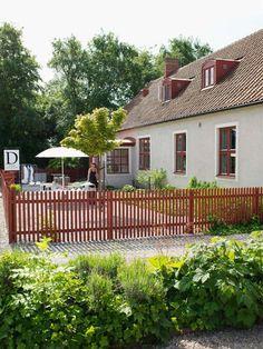 Backyard Fences, Garden Fencing, Backyard Landscaping, Garden In The Woods, Home And Garden, Garden Screening, Screening Ideas, Shady Tree, Natural Fence