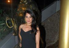 Richa Chadda's birthday bash