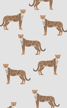 Cheetah Print Wallpaper for Bedroom . Cheetah Print Wallpaper for Bedroom . Textures Patterns, Print Patterns, Fun Patterns, Illustration Inspiration, Pattern Illustration, Whatsapp Wallpaper, Iphone Background Wallpaper, Cheetah Wallpaper, Emoji Wallpaper