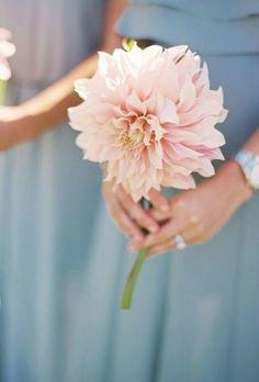 Simple Bridesmaid Bouquets, Dahlia Wedding Bouquets, Dahlia Bouquet, Dahlia Flower, Bridesmaid Dresses, Floral Bouquets, Bridal Bouquets, Wedding Bridesmaids, Wedding Dresses