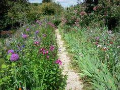 Maison et jardins de Claude Monet - Jardin de Monet, à Giverny : Clos Normand : allée bordée de massifs de fleurs