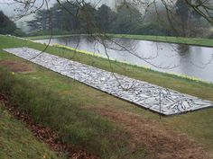Richard Long 'Cornwall Slate Line, 1990',       2530 x 260 x 7,5cm.      adjecent to the Central Pond,      upper photo: Matthew Bullen.
