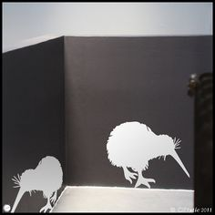 New ZEALAND : Two Kiwi birds eating - WALL DECAL for kids on Etsy, $16.94 AUD