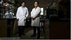 ¡La clave para probar fármacos! Lograron replicar el alzhéimer en una placa de Petri  - http://panamadeverdad.com/2014/10/13/la-clave-para-probar-farmacos-lograron-replicar-el-alzheimer-en-una-placa-de-petri/