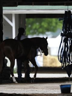 Kentucky Derby Schedule - It's Today! Anyone into this? I know @gabriellamitch is, anyone else? I never have been until she started talking about it lol, now I'm really curious! :) Here is the Schedule. -  http://www.usatoday.com/story/sports/horseracing/2015/05/02/kentucky-derby-time-tv-schedule-churchill-downs/26705787/