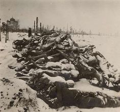 Piled up before the local cemetary, hundreds of corpses.