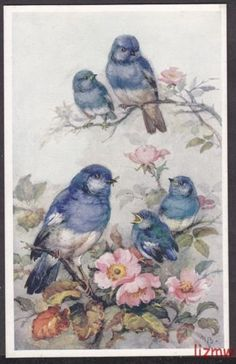 BIRDS BLUE TITS MOTHER FEEDS YOUNG IN BLOSSOM M BOWLEY ART DRAWN PRINTED CARD