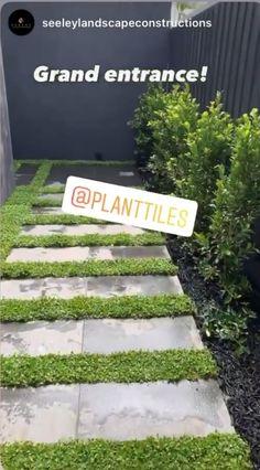 Grand Entrance, Landscaping Ideas, Tiles, Australia, Landscape, Plants, Diy Landscaping Ideas, Room Tiles, Grand Entryway