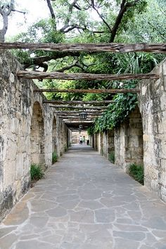 The walls of the Alamo along a complex. Visiting this site in San Antonio, TX is always free. Places Ive Been, Places To Visit, San Antonio Missions, Only In Texas, Visit Texas, Republic Of Texas, Loving Texas, Texas Pride, South Texas