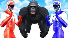 3D Gorilla #PowerRangers Finger Family Song Nursery Rhymes for Kids Baby...