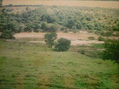 Pós enchente do Rio Araguari ou Rio das Velhas em Sacramento - MG - (Janeiro de 1997)