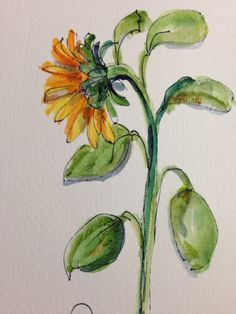 Sunflower Watercolor Card III by gardenblooms on Etsy