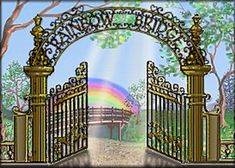 Just this side of heaven is a place called Rainbow Bridge.  Suddenly he begins to run from the group, flying over the green grass, his legs carrying him faster and faster.... please click on the website link for the poem!!!