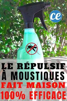 Get Rid Of Mosquitoes In The Garden With This Homemade Spray.