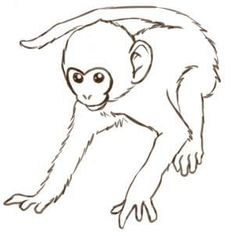 draw monkey face easy monkeys drawings how to draw monkeys step - monkey drawing easy Monkey Drawing Cute, Cartoon Monkey Drawing, Easy Cartoon Drawings, Monkey Art, Easy Drawings, Animal Sketches, Animal Drawings, Monkey Illustration, Monkey Pictures