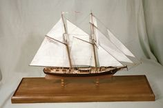 US Revenue Cutter JOE LANE -scratchbuilt wood model    This overview profile show one of America's naval schooners, JOE LANE, as she would have appeared after her repairs at Norfolk, Viriginia in 1855. On her maingaff she carries, in minute detail, a fine handpainted ensign of the United States Revenue Marine which is today known as the United States Coast Guard.