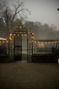 Black With Gold Entry Gate leading into the night