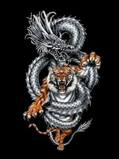 Tiger Dragon Yin And Yang Wallpaper Download The Free